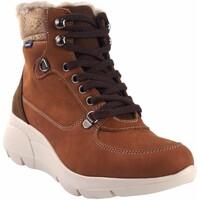 Sapatos Mulher Multi-desportos Baerchi 55203 de couro Castanho