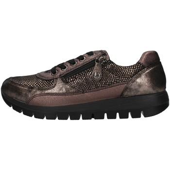 Sapatos Mulher Sapatilhas Enval 8265644 Castanho