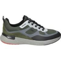 Sapatos Homem Sapatilhas Fluchos ZAPATOS  F1389 CABALLERO KHAKI Vert