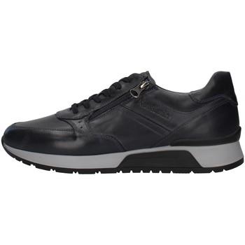 Sapatos Homem Sapatilhas NeroGiardini I001723U Azul
