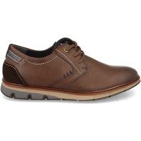 Sapatos Homem Sapatos Clowse 1E1201 Marron