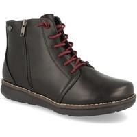 Sapatos Mulher Botins Clowse VR1-310 Negro