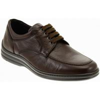 Sapatos Homem Mocassins Fontana  Multicolor