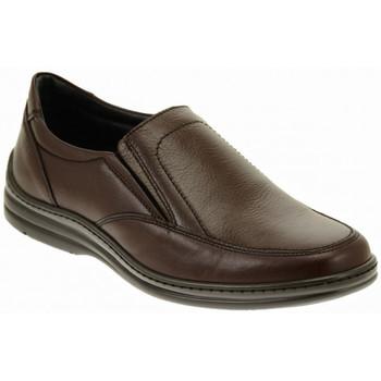 Sapatos Homem Sapatos Fontana  Multicolor