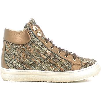 Sapatos Criança Sapatilhas de cano-alto Alberto Guardiani GK22950G Castanho