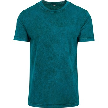 Textil Homem T-Shirt mangas curtas Build Your Brand BY070 Teal/Black