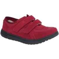Sapatos Mulher Sapatilhas Fleet & Foster  Bordo