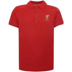 Textil Criança Polos mangas curta Liverpool Fc  Vermelho