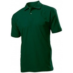 Textil Homem Polos mangas curta Stedman  Garrafa Verde
