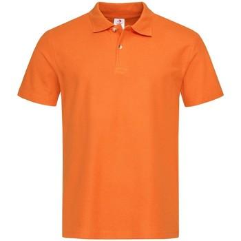 Textil Homem Polos mangas curta Stedman  Orange