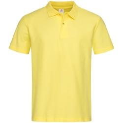 Textil Homem Polos mangas curta Stedman  Amarelo