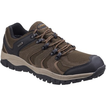 Sapatos Homem Sapatos de caminhada Cotswold  Brown