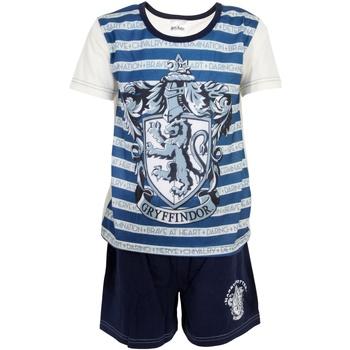Textil Rapaz Pijamas / Camisas de dormir Harry Potter  Azul/branco