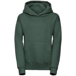 Textil Homem Sweats Jerzees Schoolgear R265B Garrafa Verde