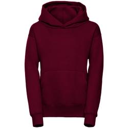 Textil Homem Sweats Jerzees Schoolgear R265B Borgonha