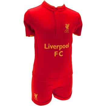 Textil Criança T-Shirt mangas curtas Liverpool Fc  Vermelho