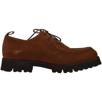 Sapatos Homem Sapatos Dasthon 1301 Castanho