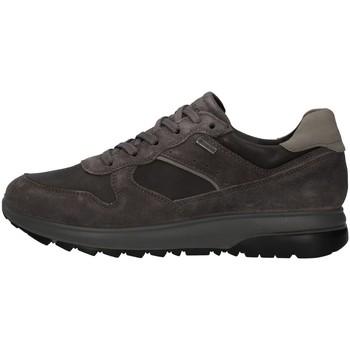 Sapatos Homem Sapatilhas IgI&CO 8132611 Cinza