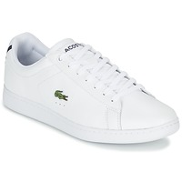 Sapatilhas Lacoste CARNABY EVO LCR