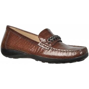 Sapatos Mulher Mocassins Geox D WINTER EURO2 Marron