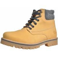Sapatos Rapariga Botas baixas Alpe 46157 12 Marron