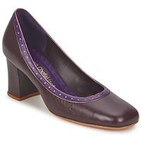 Sapatos Mulher Escarpim Sarah Chofakian SHOE HAT Castanho
