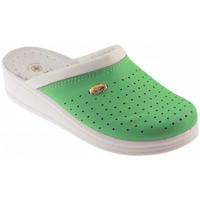 Sapatos Homem Tamancos Sanital  Verde