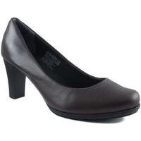 Sapatos Mulher Escarpim Rockport PUMP ZAPATO SALON EXTRA COMODO MARRON