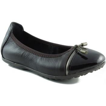 Sapatos Criança Sabrinas Acebo's BAILARINA DE NIÑA CHOCOLATE