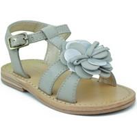 Sapatos Rapariga Sandálias Oca Loca OCA LOCA VALENCIA AD FLOR GRIS