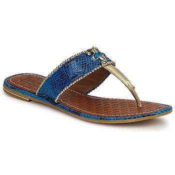 Sapatos Mulher Sandálias Juicy Couture ADELINE Claro / Azul / Cobra