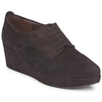 Sapatos Mulher Sapatos Coclico PEARL Castanho