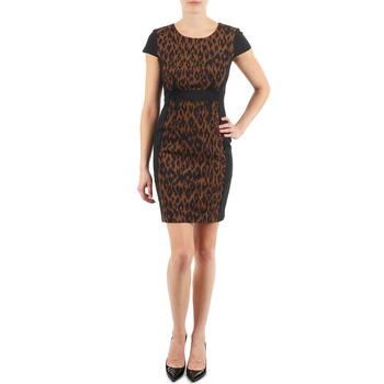 Textil Mulher Vestidos curtos Manoukian EMMA Preto / Leopardo