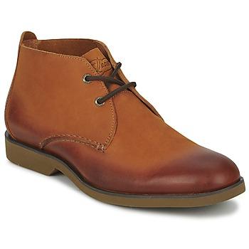 Sapatos Homem Botas baixas Sperry Top-Sider BOAT OXFORD CHUKKA BOOT Castanho