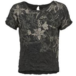Textil Mulher T-Shirt mangas curtas Oxbow NIANA Preto