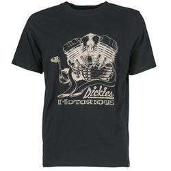 Textil Homem T-Shirt mangas curtas Dickies BRIDGEVILLE Preto