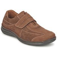 Sapatos Homem Sapatos Josef Seibel Alec Castanho