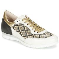 Sapatos Mulher Sapatilhas Mjus FORCE Preto / Branco / Dourado