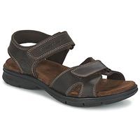 Sapatos Homem Sandálias Panama Jack SANDERS Castanho
