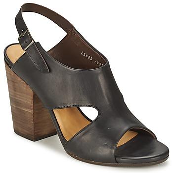 Sapatos Mulher Sandálias Coclico CASPAR Preto