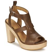 Sapatos Mulher Sandálias Coclico SHAE Castanho