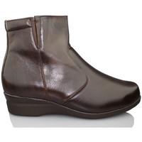 Sapatos Mulher Botins Dtorres BORINES DORES SAPPORO B5B4 W MARROM