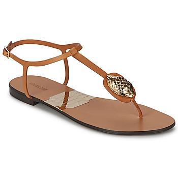 Sapatos Mulher Chinelos Roberto Cavalli XPX243-PZ220 Castanho