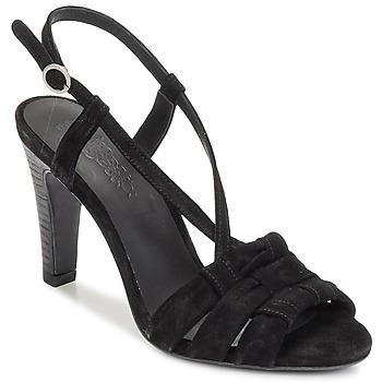 Sapatos Mulher Sandálias n.d.c. SOFIA Preto