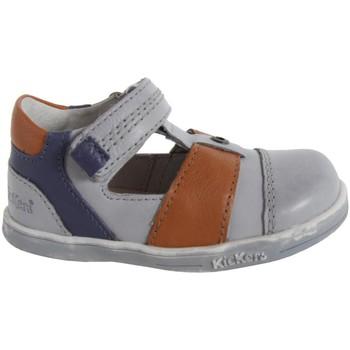 Sapatos Rapaz Sapatos Kickers 413540-10 TROPICALI Gris