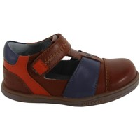 Sapatos Rapaz Sapatos Kickers 413540-11 TROPICALI Marr?n