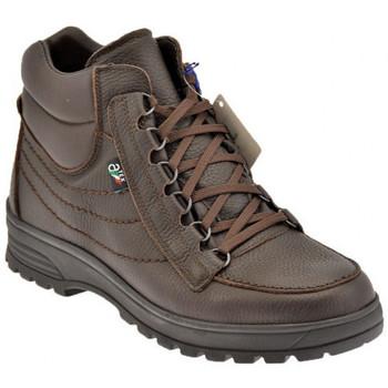 Sapatos Homem Sapatos de caminhada Alisport