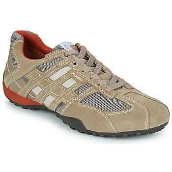 Sapatos Homem Sapatilhas Geox SNAKE Bege