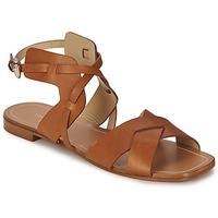 Sapatos Mulher Sandálias Etro 3947 Castanho
