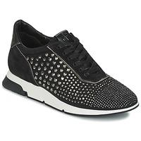 Sapatos Mulher Sapatilhas Luciano Barachini SOHO Preto